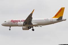 Pegasus Airbus A320-251n(WL) cn 7147 F-WWIQ // TC-NBB (Clment Alloing - CAphotography) Tags: pegasus airbus a320251nwl cn 7147 fwwiq tcnbb