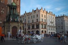 Plac Mariacki (Sergiy Matusevych) Tags: poland krakow travels bynatasha city people street krakw polska plac mariacki st marys basilica horse carriage