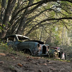 (Jonas.W.) Tags: car vehicle cars cargraveyard abandoned forgotten rusty