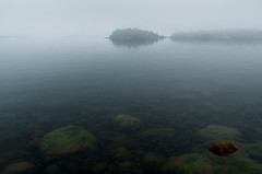 Fog IV (Mikael R.) Tags: landscape sea seascape fog water isand trees rocks seaweed finland pargas archipelago sky horizon disappears nikon d7000 sigma1750mm28 digital photography waves hav skrgrd sten  dimma himmel visibility no