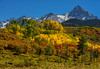 Midday Beauty (Happy Photographer) Tags: uncompahgrenationalforest autumn fall trees aspen nature amyhudechek