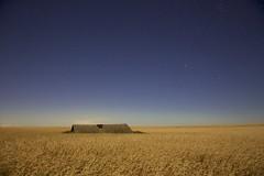 Wheat field  blues (John Andersen (JPAndersen images)) Tags: abandoned alberta aurora calgary carstairs clouds farm moonlight night stars wheat