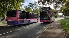 Cranfield uno bus (a.malahova) Tags: bus uno cranfield university pink transport connect miltonkeynes c10 route road stop princephilipavenue doubledecker england bedfordshire