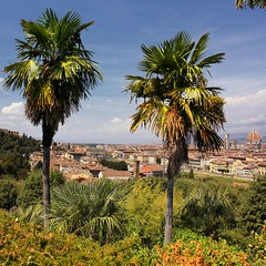View from the Boboli Gardens in Florence (Bn) Tags: park santa city trees summer vacation italy panorama holiday money hot streets tower art history weather gardens museum del river gold florence italian topf50 europe italia gallery view bell maria churches tourist panoramic ponte campanile explore palmtrees tuscany da vista firenze fl leonardo uffizi arno michelangel