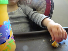 chicken nugget (Lynn Kelley Author) Tags: toddler highchair wana fingerfood chickennugget lynnkelley curseofthedoubledigits bbhmcchiller monstermoonmysteries lynnkelleychildrensauthor