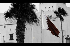 Qatar Flag (MoHaMaD DivaR) Tags: morning tree nature afternoon flag middleeast arabic arab arabian doha qatar nationalday    qatarflag  dohacity qatarsflag flagqatar dohaconference