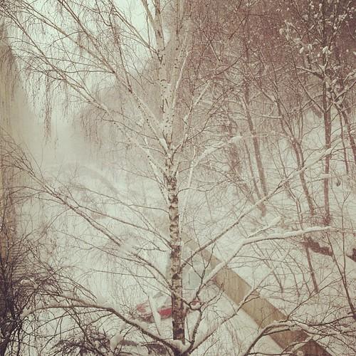 #belarus #mozyr #winter #window #view #december