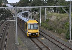 Sydney Suburban Trains - Waratah Set A19 departs Hurlstone Park (john cowper) Tags: suburban sydney millennium railwaystation newsouthwales waratah nswrailways suburbanrailways hurslstonepark