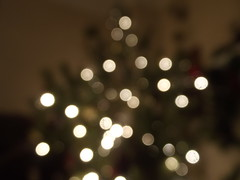 Seasonal Bokeh (Owen H R) Tags: christmas light tree lights bokeh 2013 owenhr