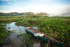 Good morning, Bau Sau (Ton Ten) Tags: morning nature landscape boat fogs tonten namcattien zf2 bausau distagont3518