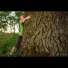 Day Two Hundred Six in 2012 (David Dahlin) Tags: tree green hug leo