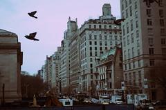City of Angels (Génial N) Tags: ny newyork pentax manhattan metropolitanmuseum nycity pentaxk01