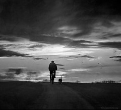 Cyclist with Dog (h.koppdelaney) Tags: friends sky dog art digital training photoshop cyclist friendship symbol january picture dramatic philosophy romantic february metaphor symbolism psychology archetype koppdelaney
