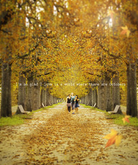 Beautiful Autumn =) (Nhoj Leunamme == Jhon Emmanuel) Tags: autumn friends italy flores amigos leaves yellow hojas nikon october flickr italia jonathan viento lucca otoo octubre emmanuel tarello d5100