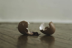 Embryo (bellydnce1103) Tags: brown selfportrait broken wet girl floors egg surreal hardwood laying week3 2013 weekofjanuary15 52weeksthe2013edition 522013