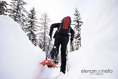Dolomiti (Elena Martinello) Tags: trees winter snow man pine forest person persona track foto path powder backpack neve pow zaino inverno birra dolomiti gettyimages bosco ragazzo photooftheday ciaspole salewa dynafit gettyimagesitalyq1 gettyimagesitalyq2 gettyimagesitalyq3