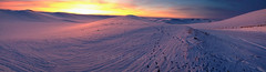 Palouse Winter Pano (Ryan McGinty) Tags: winter panorama sunrise landscape purple pano idaho magichour iphone palouse ryanmcginty