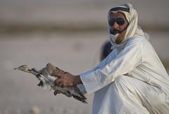 فريق التجهيزات اثناء اطلاق الصيد فالمحميه (القلايــل) Tags: الامارات الكويت البحرين عمان المقناص قطر السعودية طيور شاهين حر فرخ قنص قرناس القلايل