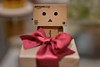 15 of 365: A present for you (smiling lily) Tags: bokeh present redbow danbo revoltech danboard