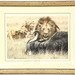 21. Limited Edition Artist Signed Lions Print