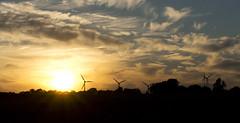 Windrder an der Ostsee (kalakeli) Tags: windrder windmills sonnenuntergang sunset backlight gegenlicht steilkstegrmitz grmitz august 2016 balticsea ostsee blau blue