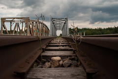 Two brothers (modestmoze) Tags: brothers growing twigs bridges bridge architecture outside outdoors 2016 500px lithuania summer july trees nature tracks travel traintracks view day clouds cloudy sky blue grey white black brown rusty rust old constructions railings rocks wood planks yellow green