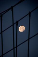Moon Game (NathalieSt) Tags: europe france hrault lagrandemotte languedocroussillon lune moon night nikon nikond5500 nikonpassion nikonphotography nuit languedocroussillonmidipyrn languedocroussillonmidipyrnes fr