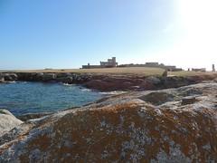 La Pointe de Trvignon - Finistre - Et 2016 - (jeanyvesriou1) Tags: pointe beg pointedetrvignon rivage littoral seaside borddemer
