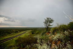 September Rain (28 of 54) (mharbour11) Tags: rain clouds storm texas cotton highway road countryroads