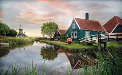 Wonderful life (pimontes) Tags: landcaspe paisaje color holanda zaanstad molinos hss pimontes fez