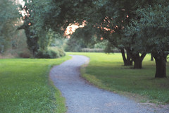 Pathway to... (Jani M) Tags: path tree park wood sunset grass green evenng