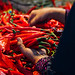 Woman's Hands with Red Chilis, Indonesia
