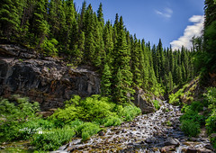 Mountain Side Waterfall (Cathy Neth) Tags: 1424mm 2016inphotos 365photoproject 365project flowermoundphotographer flowermoundphotography silvertoncolorado beautifullandscapes bluesky cathyneth cathynethphotography circularpolarizer cnethphotography colorado coloradobeauty coloradolandscapes coloradomountainlandscapes d810 downtownsilverton landscape landscapephotography landscapes leefilters longepxosure mountainlandscapes mountainpass mountainphotography mountains nature naturesbeauty nikon nikond810 project365 roadtosilverton rollingwhiteclouds water watermovement waterfall waterfalls whiteclouds whitepuffyclouds longexposurephotography longexposure waterfallphotography
