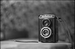 Lubitel (spacephoenix) Tags: camera winter blackandwhite bw tlr film vintage mediumformat photography bokeh grain gear lubitel zenit russian ilford lithuania delta400 selfdeveloped zenite id11 ilforddelta ilfordid11 helios442 film:iso=400 film:brand=ilford epsonv500 developer:brand=ilford film:name=ilforddelta400 developer:name=ilfordid11 filmdev:recipe=8243