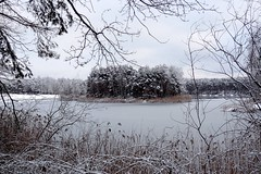 Mysterious island... 2 (radimersky) Tags: camera winter lake snow ice water landscape island frozen europa europe sony poland polska cybershot mysterious zima woda compact nieg ld silesia lsk jezioro krajobraz snih wyspa opolskie turawa tajemnicza turawskie zamarnite dschx9v
