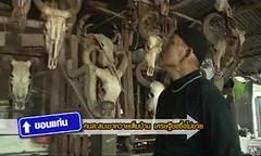 Buffalo horn Thailand_000
