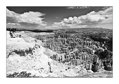 Bryce Canyon (Daniel Szymanek) Tags: wood camping light red sky blackandwhite bw panorama cliff usa sun white holiday west tree rot nature rock clouds digital america canon wonder photography eos coast photo nationalpark sand flickr unitedstates desert natural bokeh urlaub unitedstatesofamerica picture himmel wolke roadtrip full frame 5d sw 28 fels fullframe bild brycecanyon overlook westcoast sonne mkii schlucht mark2 weis 1635mm schwarzweis 1635mmf28 canonef1635mmf28lusm 1635mm28 canoneos5dmark2