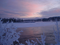 Open Air Conditioning ... (Mr. Happy Face - Peace :)) Tags: yukon river water waterscape whitehorse earlymorning nature pink skies reflections pristine naturalbeauty naturesbeauty winter wintry frosty natureswonder weather explore sky clouds sunrisesunset treeline mountain red riverflow color colorful colors wildrivers salmonrun fishing sun sunset cold northof60 northamerica internationaltravel light natureartworks peace peacefulmood landscapescountrysides valley skiescloudsgroup invernowinter deepfreeze 35belowzero arcticairmass temperature eveningweather windchill chills chilly naturespoetrygroup frostbite arcticairweather northwest north60 frostebite winterbeauty touchofmagic cloud h2o htt happycanada150 cans2s wtbw