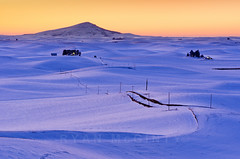 Palouse Purple (Ryan McGinty) Tags: winter sunset snow landscape washington purple idaho magichour palouse ryanmcginty