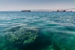 _MG_8082 (Antonio Balsera) Tags: barco redsea rocas jordania marrojo fondomarino aqqaba áqaba