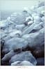 Kuiend ijs (scan) (nandOOnline) Tags: winter berg nederland natuur vuurtoren marken landschap noordholland ijselmeer ijs vorst markermeer vriezen ijsschotsen kruiendijs dooien paardvanmarken