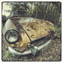 MG (darbians) Tags: cars abandoned car vintage nikon vintagecar decay urbandecay creepy fisheye mg forgotten urbanexploration derelict f8 ue urbex abandonedcar samyang rurex d7000 nikond7000 samyangfisheye darbians abandondedmg