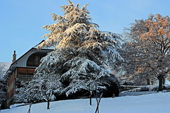 farmhouse (overthemoon) Tags: winter snow architecture farmhouse schweiz switzerland suisse lausanne svizzera vaud romandie thursdaywalk maillefer imagepoésie utata:project=tw355