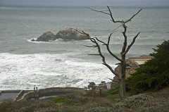 Land's End (john weiss) Tags: sanfrancisco california usa geotagged unitedstates seacliff landsend sutrobaths 18200vr d80 labcfk geo:lat=3778049670 geo:lon=12251251996 2012sf5536