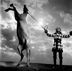 Newton, Helmut (1920-2004) - 1969 French Vogue, Paris (RasMarley) Tags: horse paris france 1969 fashion model photographer contemporary australian vogue german jewish 1960s helmut 20thcentury newton frenchvogue