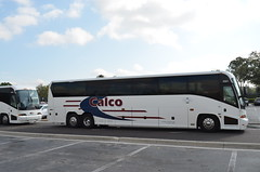 Calco 4561 (crown426) Tags: coach orlando florida motor waltdisneyworld downtowndisney mci calco hotard j4500