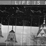 LIFE IS GRA...