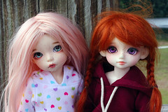 the girls at the park (lacer.beam) Tags: lolly honey bjd luts delf fairyland ante littlefee pukifee