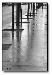 Reflejos (Modest Minguella (On/Off)) Tags: barcelona street snow tree arbol calle pavement nieve reflected arbre carrer neu reflejos lhospitalet vorera acera reflexes canoneos500d mygearandme tamronsp70300mm rememberthatmomentlevel1