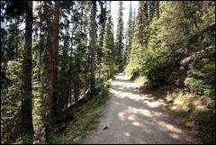 Mirror Lake Trail (greenthumb_38) Tags: canada reunion rockies canadian alberta 2012 canadianrockies jeffreybass august2012 moseankoreunion